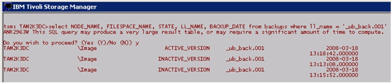 Figure 9 - TSM Admin Query with Three Backup Versions