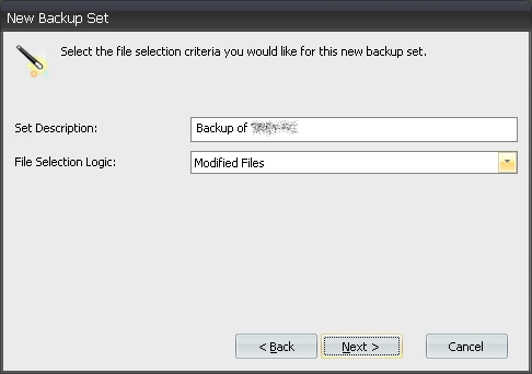 incremental differential backups file by file agent